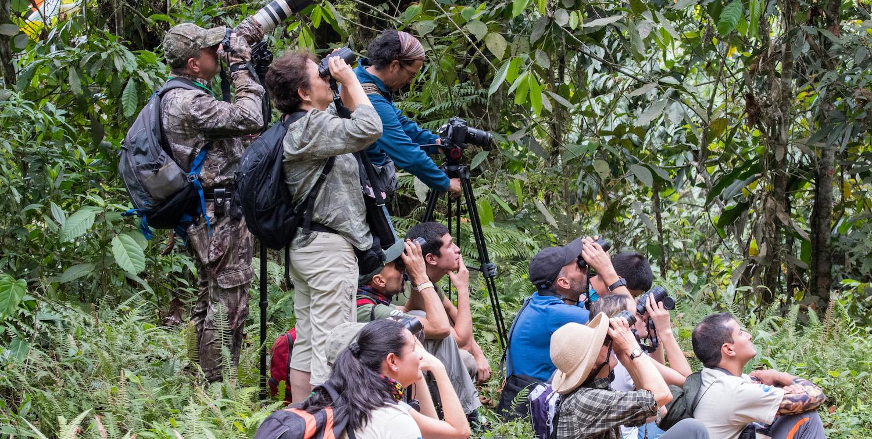 A handful of people looking up through binoculars.