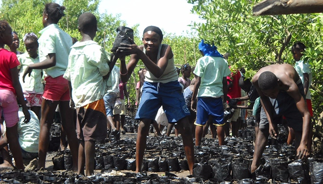 Children help FoProBiM team members with a project to create sustainable livelihoods through mangrove nursery and replanting in Haiti.