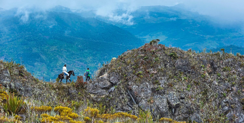 Man on foot leads woman on horse on undulating terrain.