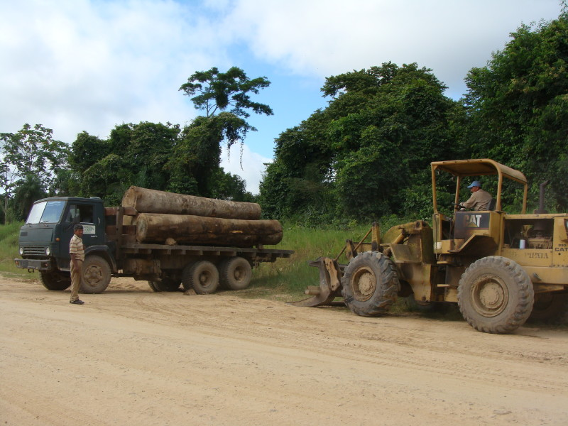 Two trucks on dirt road: one with large logs on bed and one with large shovel on front