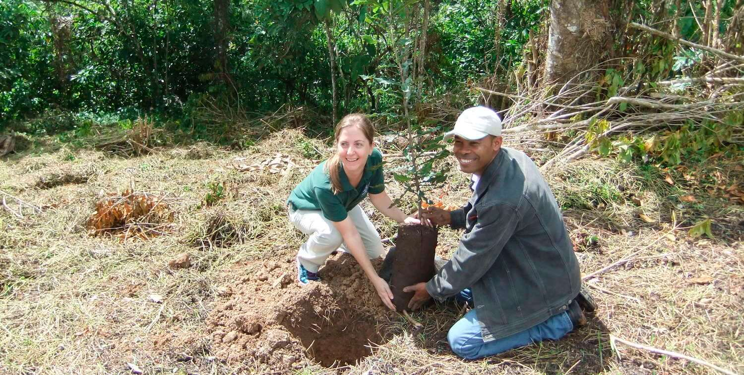 A woman and man planting a tree.