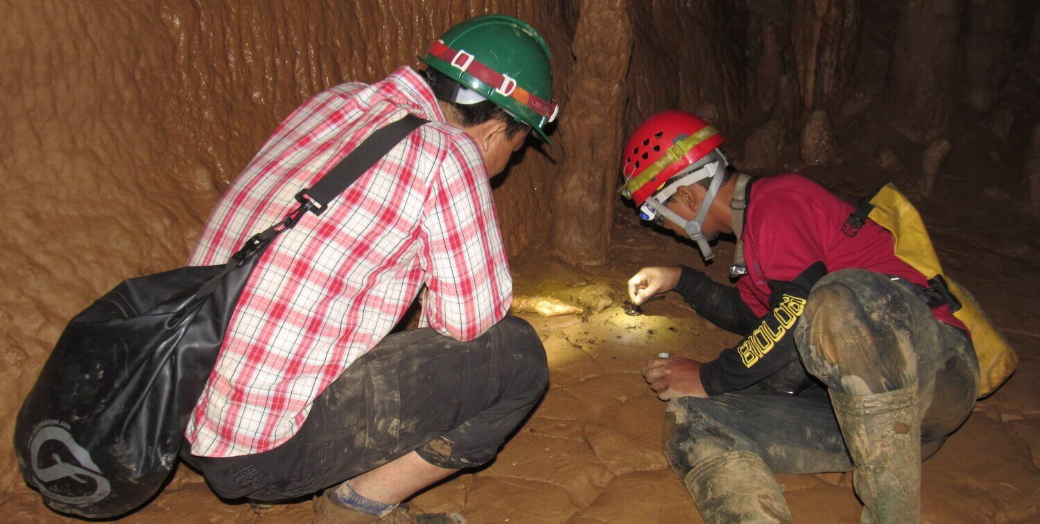 Two men wearing hard hats inside a cave, looking at specimen.