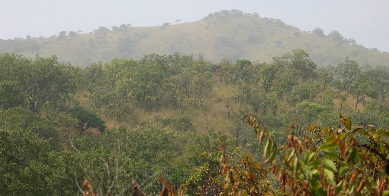Hilly, green terrain.
