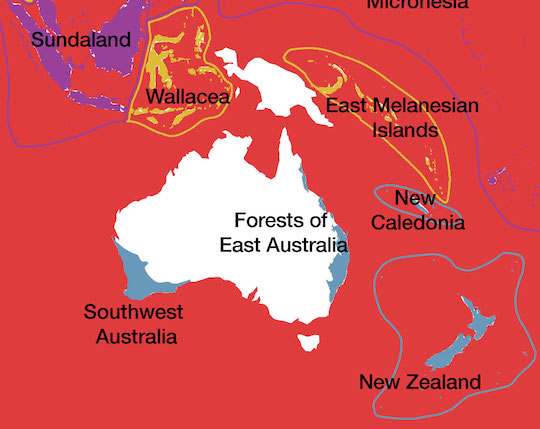 A map shows the location of the Forests of East Australia Biodiversity Hotspot.