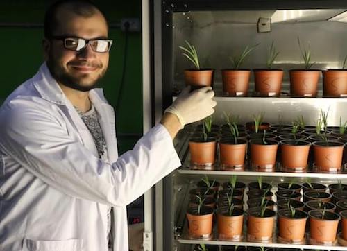 Man in lab coat with refrigerated plants in pots.