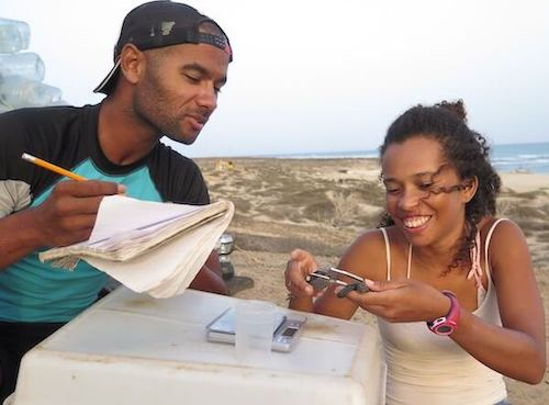 Man and woman on beach, he with notebook, she measuring turtle hatchling.