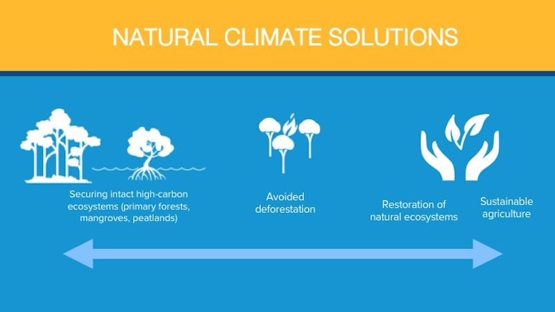 Yellow and blue graphic lists securing intact ecosystems, avoided deforestation, restoration of natural ecosystems and use of sustainable agriculture as ways to address climate change.