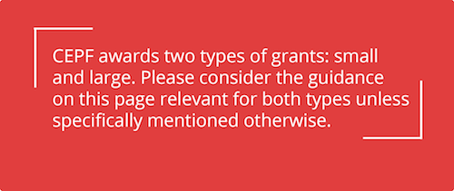 Please consider the guidance on this page relevant to both large and small grants unless specifically mentioned otherwise.