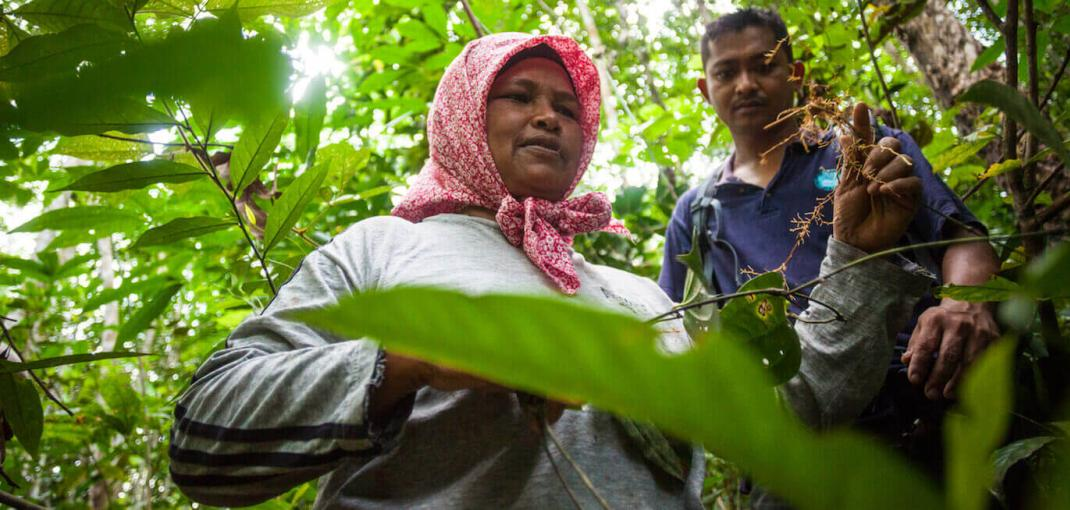 Woman holding up plant, man next to her, in forest.