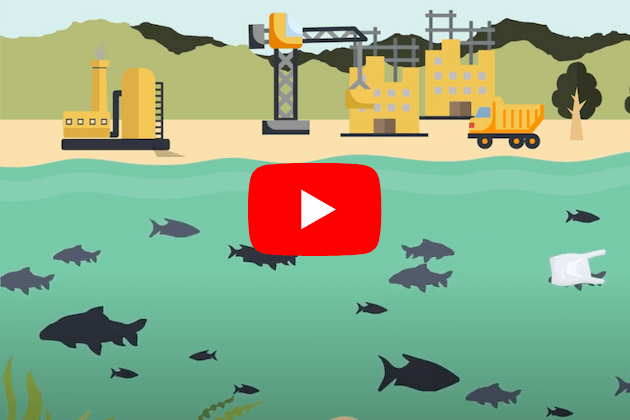 Screenshot of animated fish beneath water surface and construction equipment on beach above