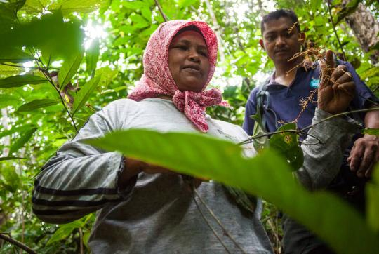 In forest, woman in red head scarf holding up tree root with man standing next to her.