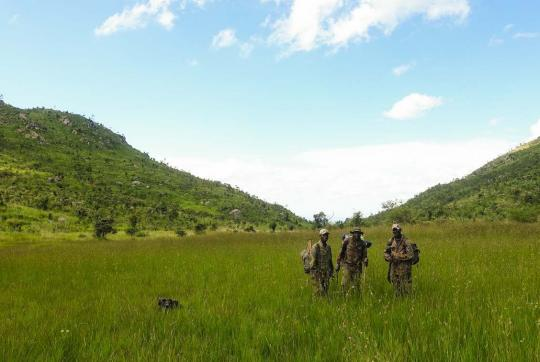 3 forest guards standing in field, large hills and blue sky in background.
