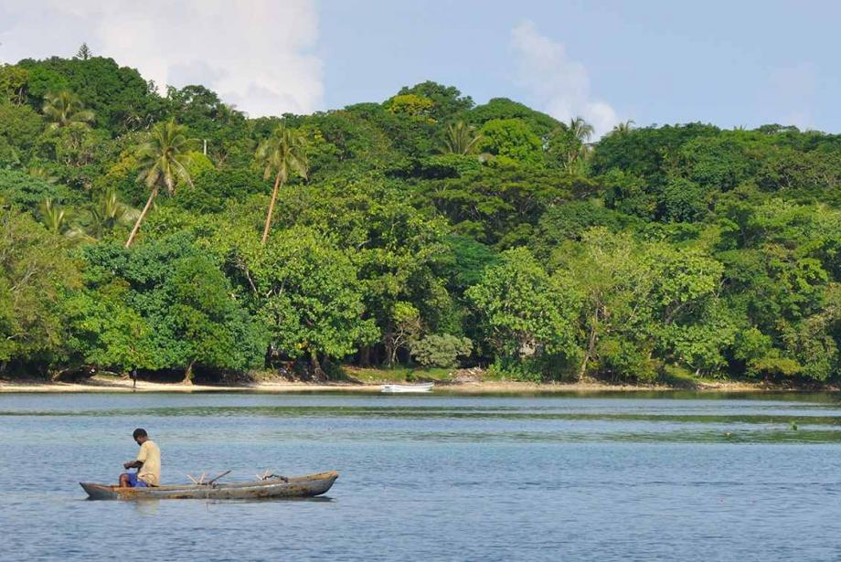 Fisherman on water in small boat, lush island in the background.