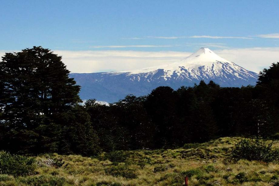 Green landscape with snow-covered volcanic cone in the distance.