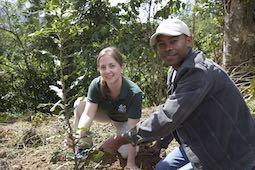 A woman and a man kneel over a tree seedling as they plan it in the ground.