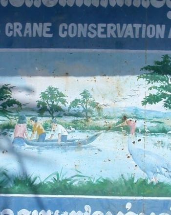 Sarus Crane Conservation Area sign