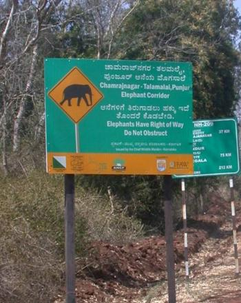 Sign telling motorists that elephants have the right of way.