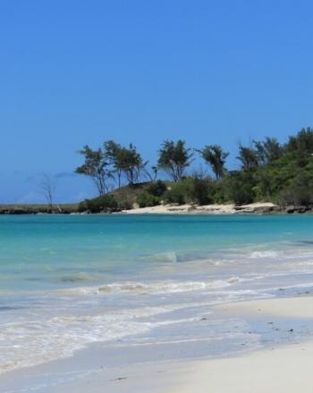 White-sand beach, turqouise waters and trees in background.