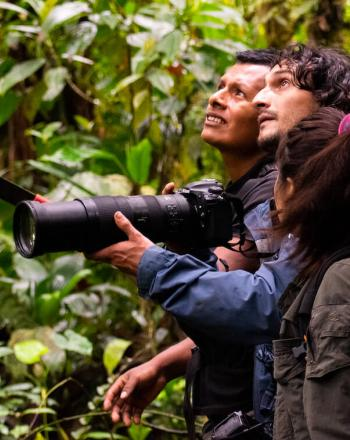 Two men and one woman birdwatching in forest, one man holds camera with very long lens.