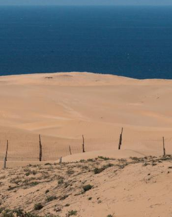 Sand dunes with water in background.