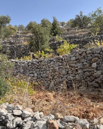 Several stone walls on hill.