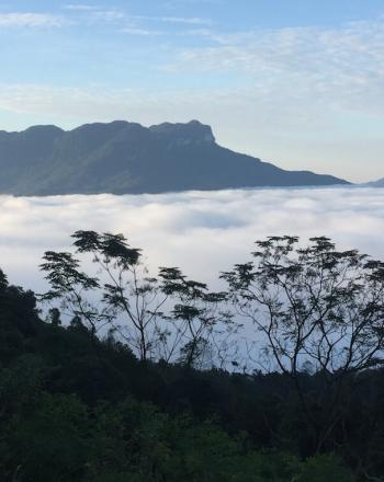 Above a layer of clouds, mountains in the background.