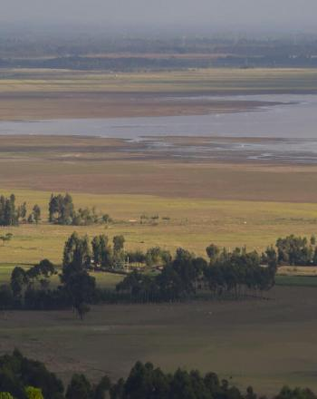 Vista of plains with a few trees, water in the distance.