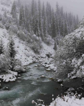 Stream running through snow-covered landscape.