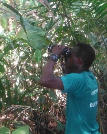 Man looking through binoculars in forest.