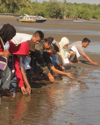 Group of people standing along shore, bending down to release sea turtle hatchlings.