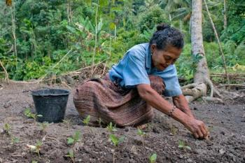 Woman seated on ground planting seedlings with forest in the background.