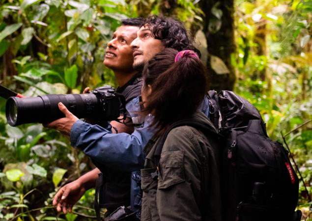 Two men and one woman in forest, looking up. One man holds camera with long lens.