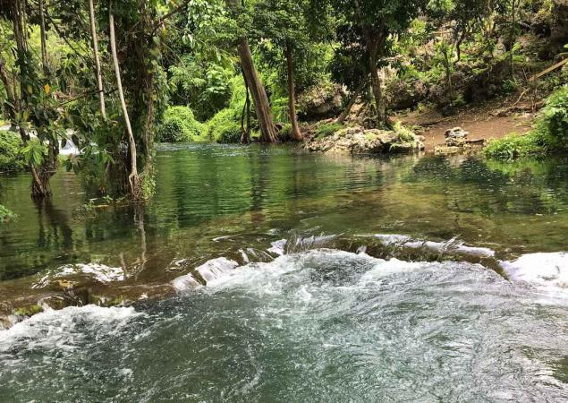 A river flows through a forested area of Efate Island in Vanuatu.