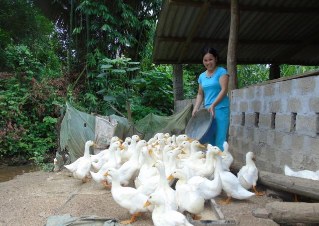 Women smiles while feeding a couple dozen ducks.