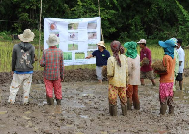 Group of people standing in mud, one presents at large poster.