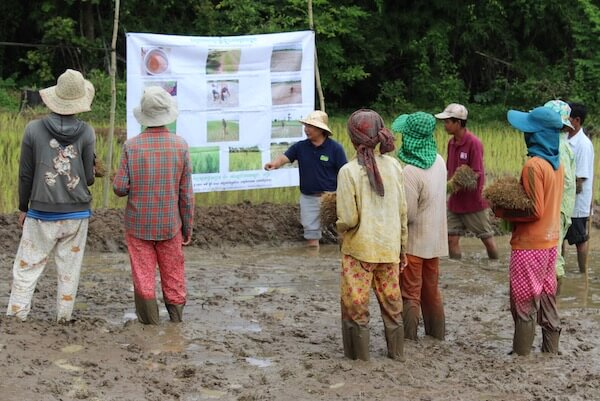Handful of people standing in ankle-deep mud, looking at large sign with photos and text.