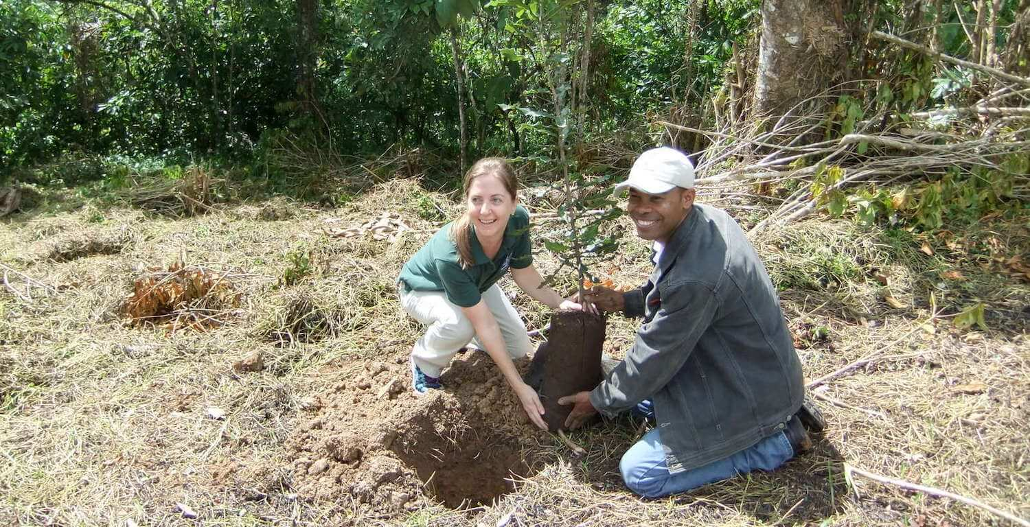 A woman and man plant a tree.