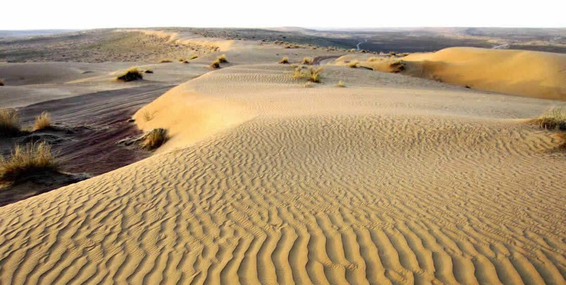 Sandy landscape.