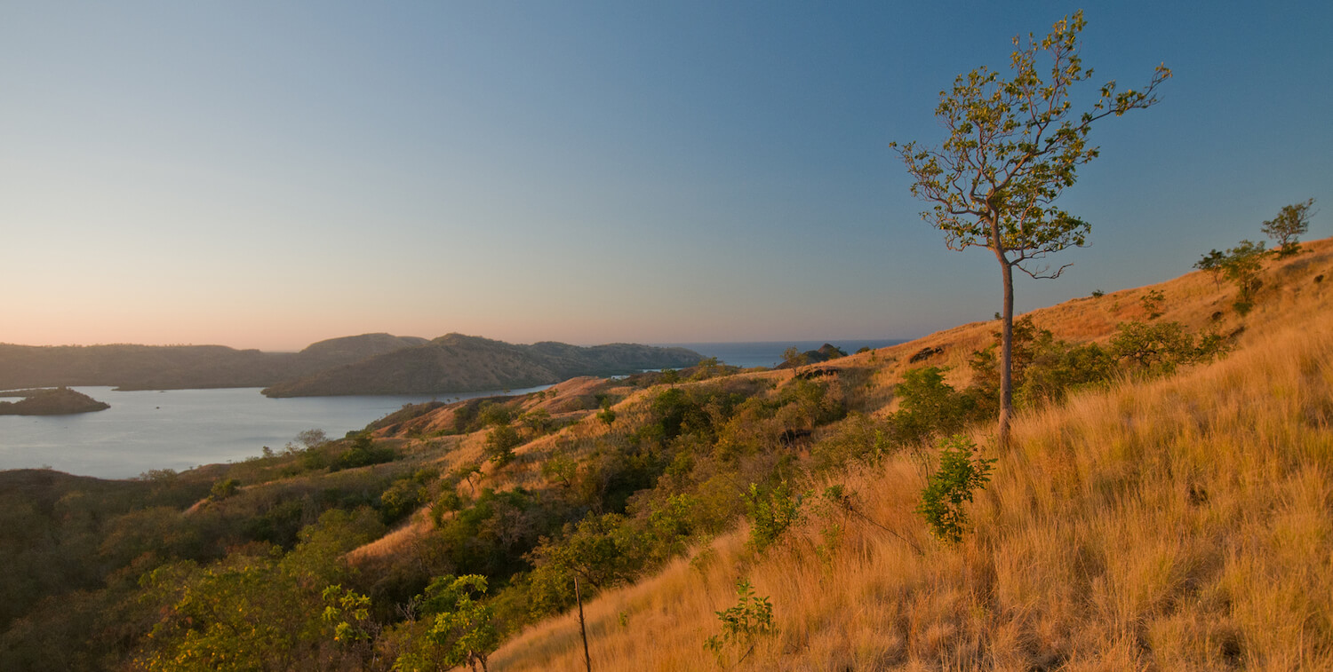 Landscape, hill in foreground, body of water in background, at either sunset or sunrise.