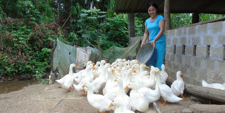 Woman feeding ducks.
