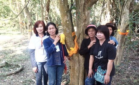 Six woman standing next to tree with yellow ribbon around it.