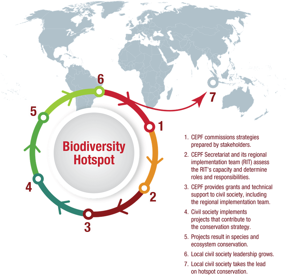 "For each biodiversity hotspot where CEPF invests, CEPF commissions an analysis and conservation strategy called an ""ecosystem profile"" that is prepared with input from local stakeholders and other experts."